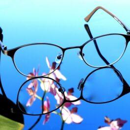glasses-1698766_960_720vierkant